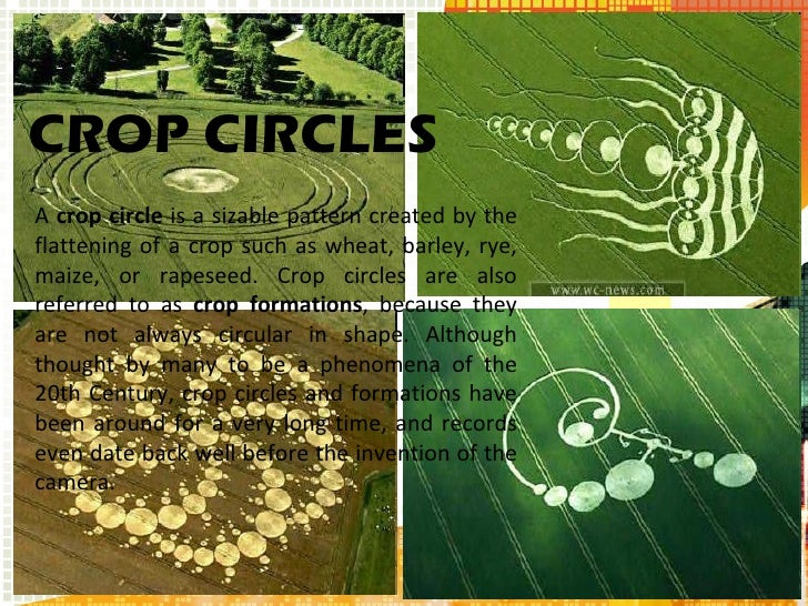 A  crop circle  is a sizable pattern created by the flattening of a crop such as wheat, barley, rye, maize, or rapeseed. C...