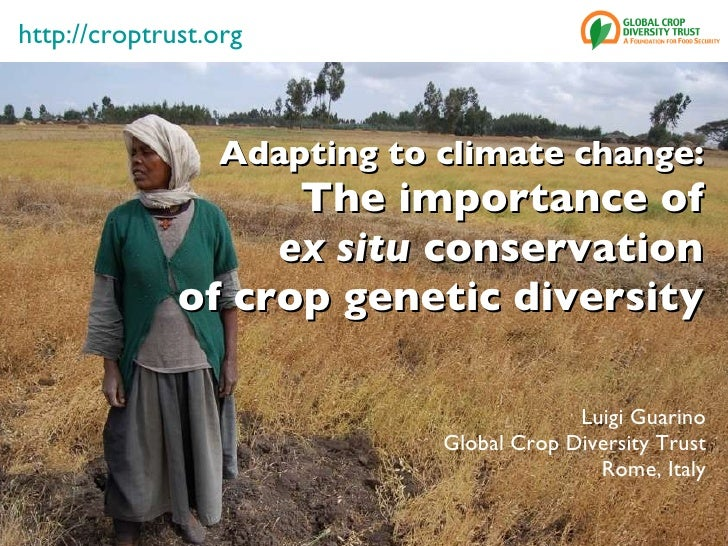 Adapting to climate change: The importance of ex situ  conservation of crop genetic diversity Luigi Guarino Global Crop Di...