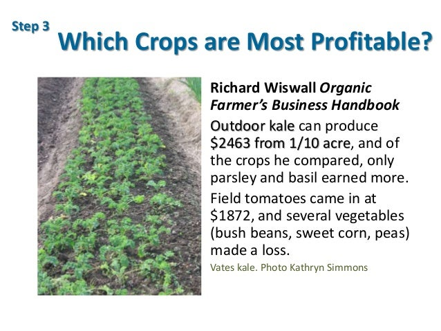 Which Crops are Most Profitable? Richard Wiswall Organic Farmer's Business Handbook Outdoor kale can produce $2463 from 1/...