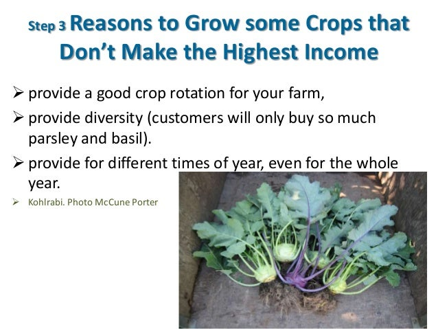 Step 3 Reasons to Grow some Crops that Don't Make the Highest Income  provide a good crop rotation for your farm,  provi...