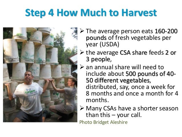Step 4 How Much to Harvest  The average person eats 160-200 pounds of fresh vegetables per year (USDA)  the average CSA ...