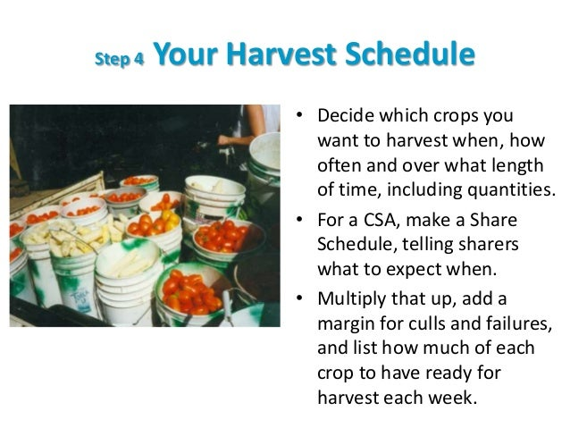 Step 4 Your Harvest Schedule • Decide which crops you want to harvest when, how often and over what length of time, includ...