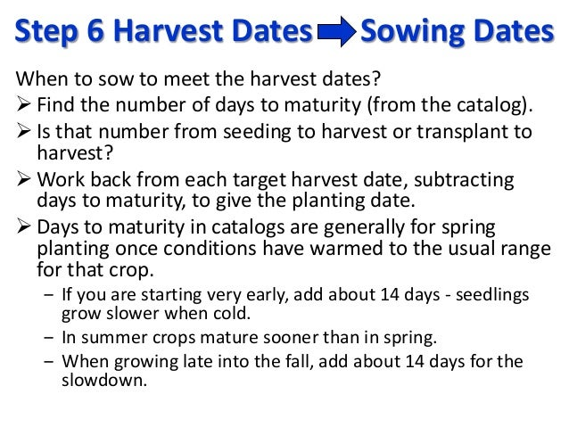 Step 6 Harvest Dates Sowing Dates When to sow to meet the harvest dates?  Find the number of days to maturity (from the c...