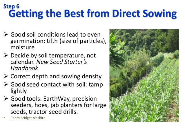 Getting the Best from Direct Sowing  Good soil conditions lead to even germination: tilth (size of particles), moisture ...