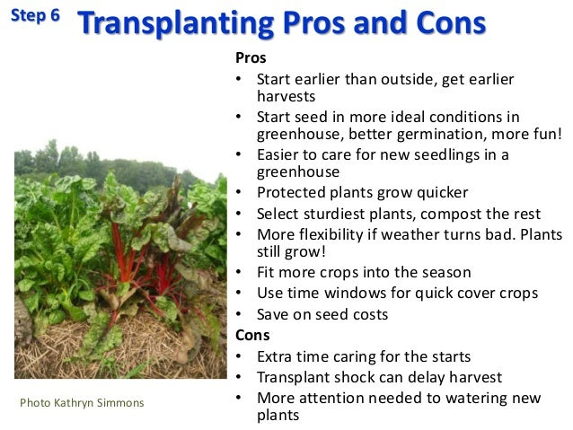 Transplanting Pros and Cons Pros • Start earlier than outside, get earlier harvests • Start seed in more ideal conditions ...