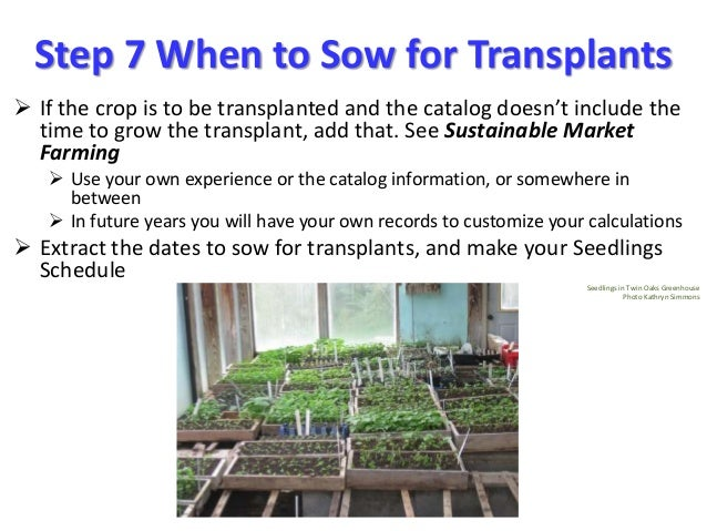 Step 7 When to Sow for Transplants  If the crop is to be transplanted and the catalog doesn't include the time to grow th...