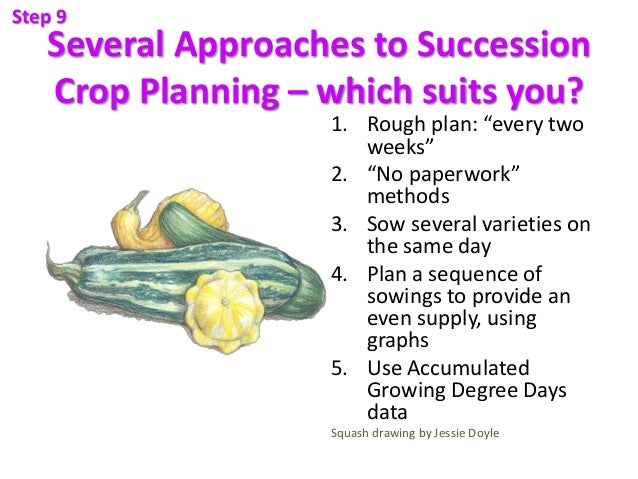 """Several Approaches to Succession Crop Planning – which suits you? 1. Rough plan: """"every two weeks"""" 2. """"No paperwork"""" metho..."""