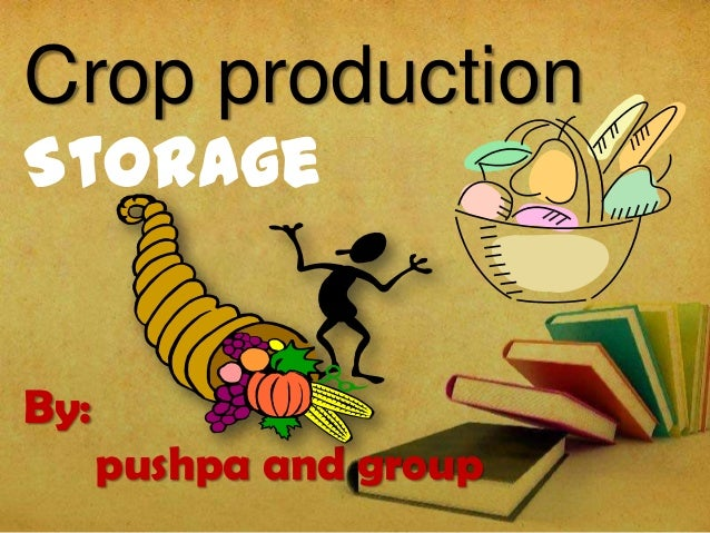 Crop production Storage By: pushpa and group