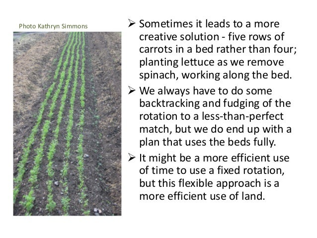 Photo Kathryn Simmons  Sometimes it leads to a more creative solution - five rows of carrots in a bed rather than four; p...