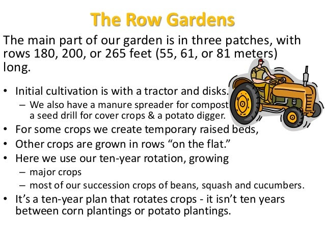 The Row Gardens The main part of our garden is in three patches, with rows 180, 200, or 265 feet (55, 61, or 81 meters) lo...