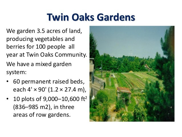Twin Oaks Gardens We garden 3.5 acres of land, producing vegetables and berries for 100 people all year at Twin Oaks Commu...