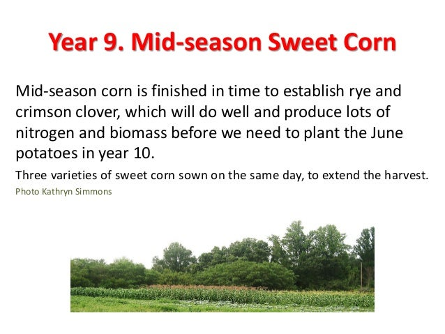 Step 5. Determine a good sequence To decide which crop should follow which other crop, we looked at the families of our ma...
