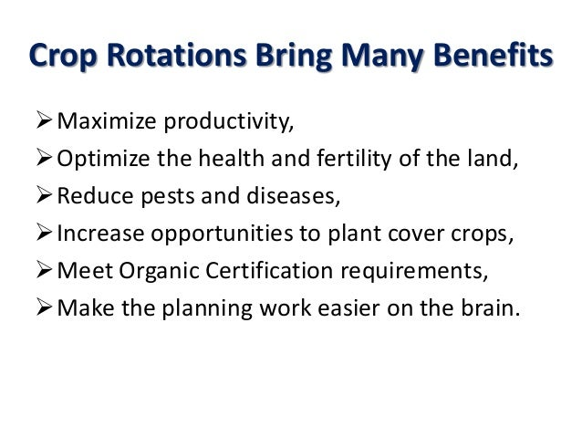 Crop Rotations Bring Many Benefits Maximize productivity, Optimize the health and fertility of the land, Reduce pests a...