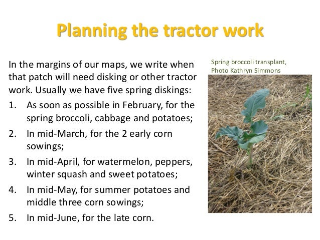 Succession Crops Planning Chart • We list the spare spaces in the plots (in order of availability) • and the crops we hope...