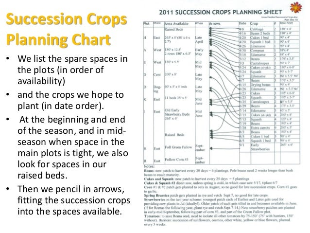 Why we like planned crop rotations This tight crop planning might sound mind-boggling, but for us it's very worthwhile.  ...