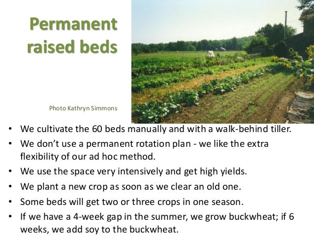 Permanent raised beds Photo Kathryn Simmons • We cultivate the 60 beds manually and with a walk-behind tiller. • We don't ...