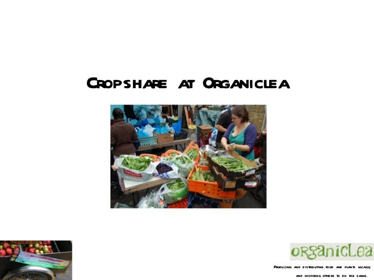 Cropshare at Organiclea                     Producing and distributing food and plants locally,                           ...