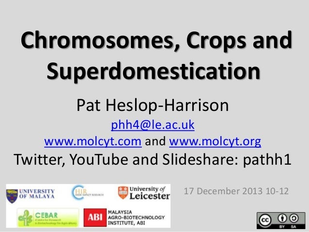 Chromosomes, Crops and Superdomestication Pat Heslop-Harrison phh4@le.ac.uk www.molcyt.com and www.molcyt.org  Twitter, Yo...