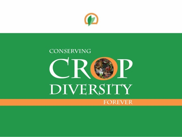 Crop Diversity  • The basis for productivity and resilience  of farming systems  • The raw material for crop improvement  ...