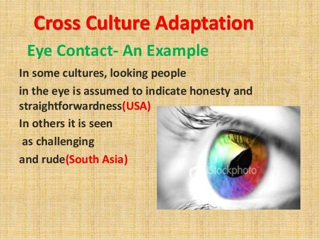 cultural adaptation example