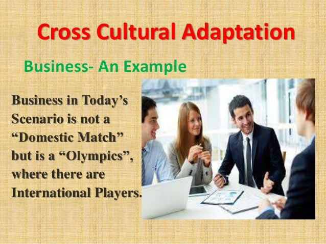 ufe0f cultural adaptation example  culture adaptation and