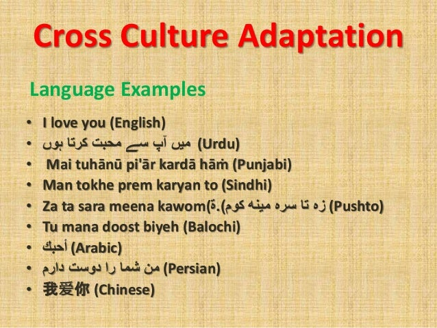 culture and cultural adaptation However, the situations and pressures of culture shock, cross-cultural  adaptation, and learning satisfaction are critical for mainland.