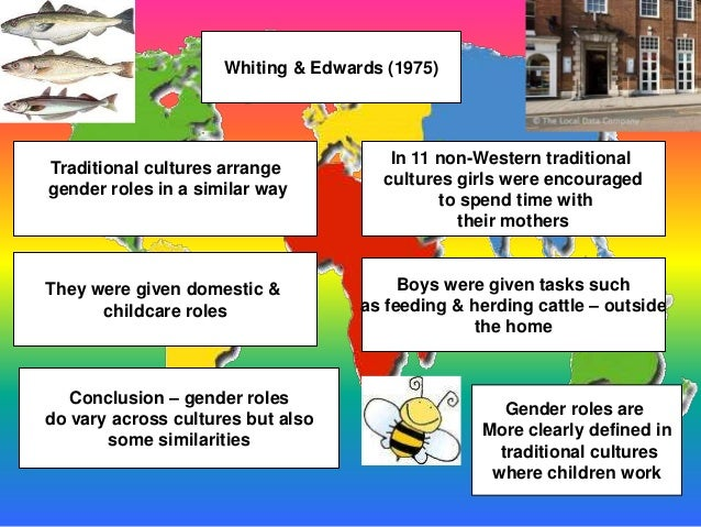 How does school influence our gender roles? | eNotes