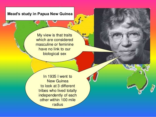 New guinea tribes gender roles essay