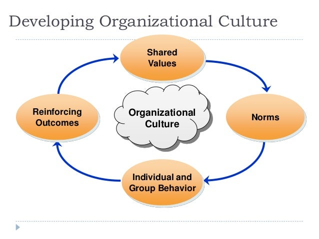 toyota organizational culture norms View notes - 71 case in point- toyota struggles with organizational structure from accounting 201 at disd discussionquestions 1 what changes in the organizing.