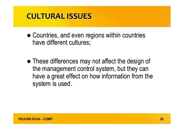 cross cultural issues in management pdf