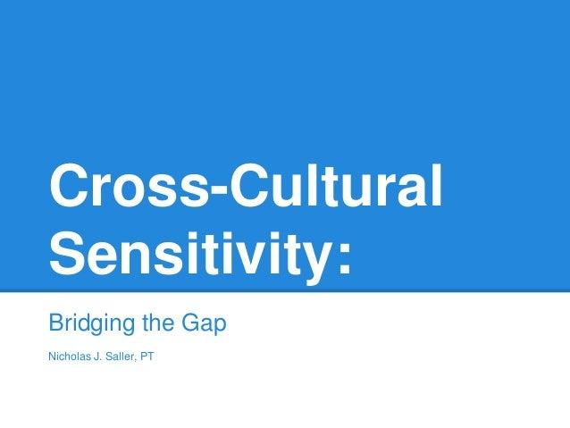 cross cultural sensitivity bridging the gap nicholas j saller