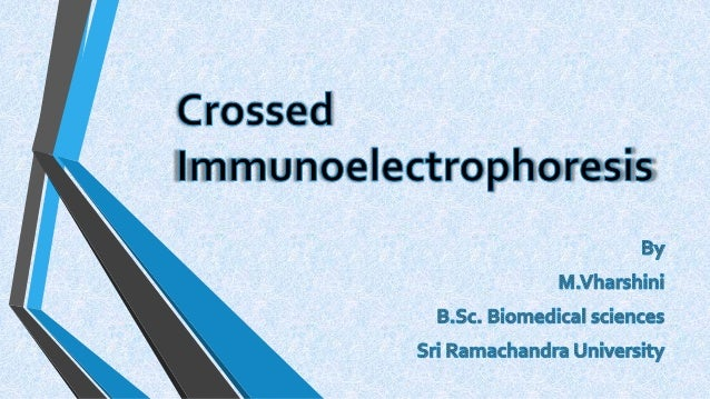 •Crossed immunoelectrophoresis, also known as Two-dimensional (2-D) immunoelectrophoresis is a particularly useful techniq...