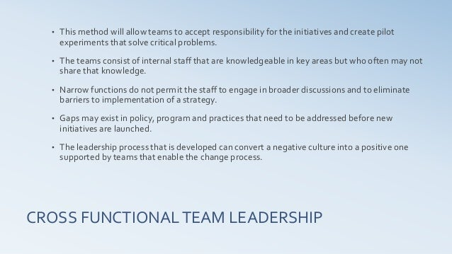 cross functional team leadership workshop prospectus v2