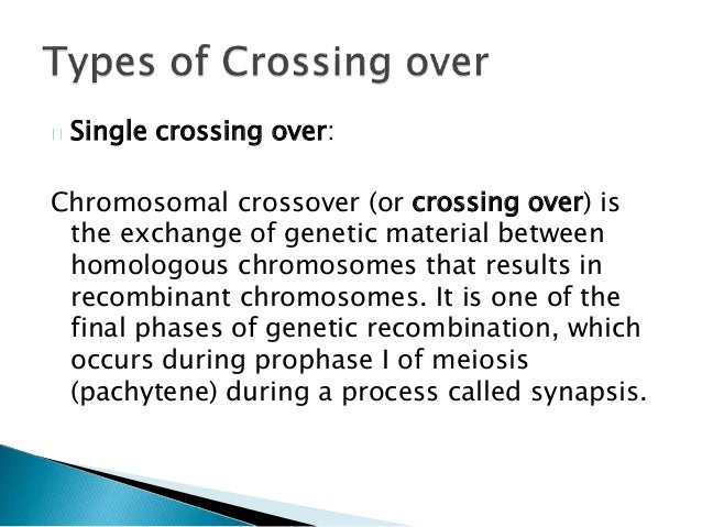 process of crossing over