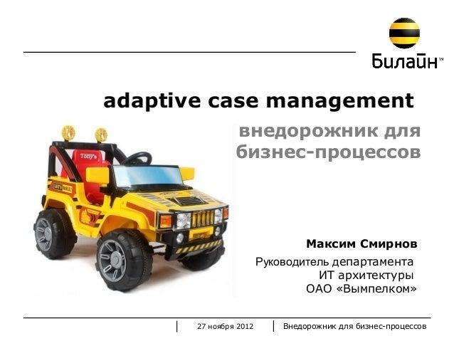 adaptive case management                внедорожник для                бизнес-процессов                                 Ма...