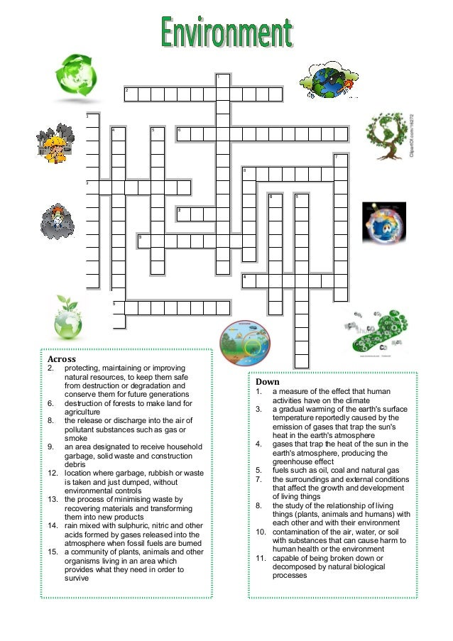 Crossword Environment