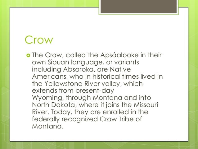 Crow The Crow, called the Apsáalooke in theirown Siouan language, or variantsincluding Absaroka, are NativeAmericans, who...