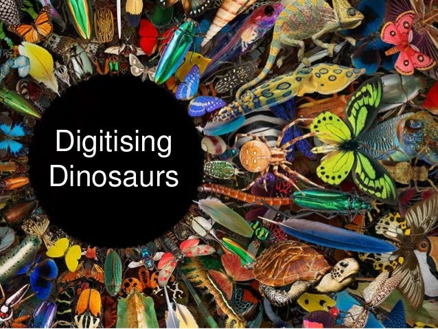 Digitising Dinosaurs