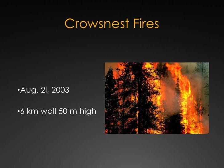 Crowsnest Fires<br /><ul><li>Aug. 2l, 2003