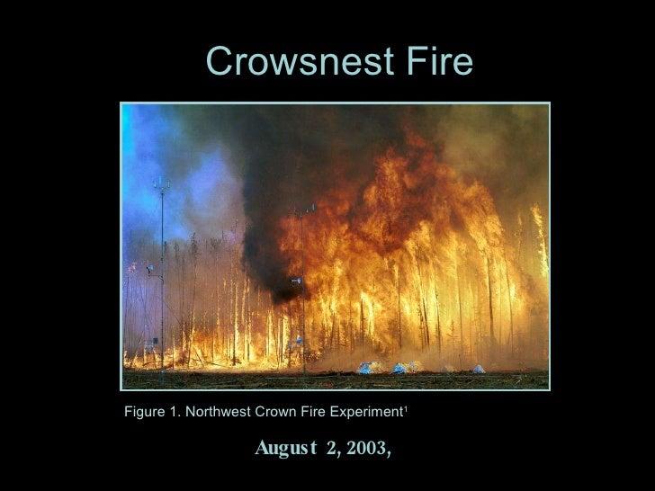Crowsnest Fire August  2, 2003,  Figure 1. Northwest Crown Fire Experiment 1