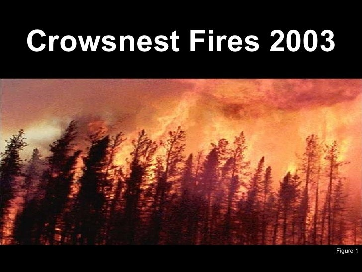 Crowsnest Fires 2003 Figure 1