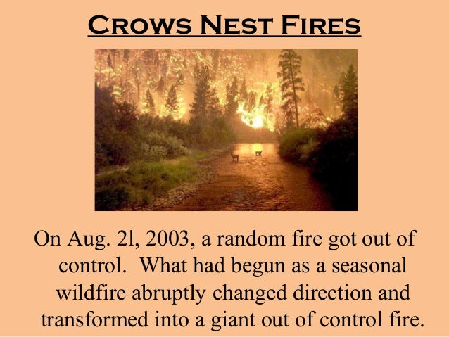 crows nest fire - photo #10