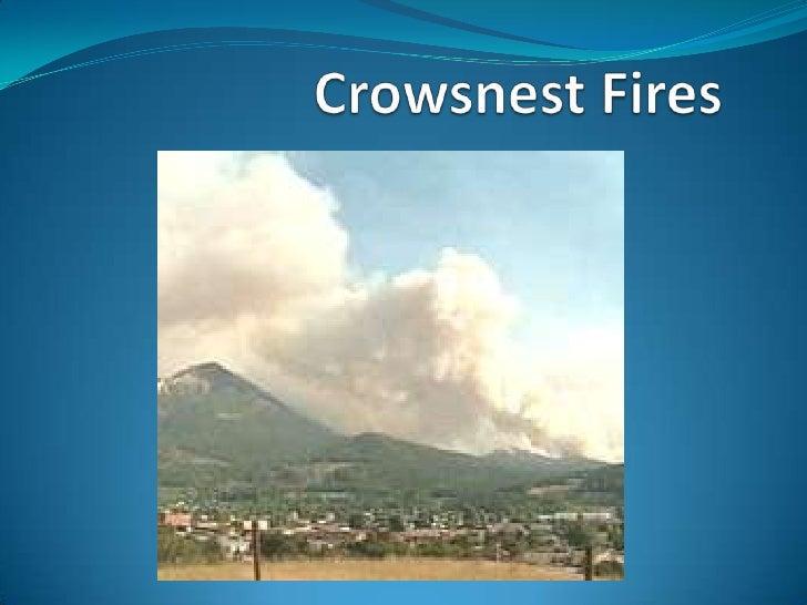 Crowsnest Fires<br />