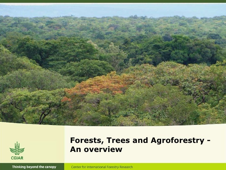 Forests, Trees and Agroforestry -An overview<br />