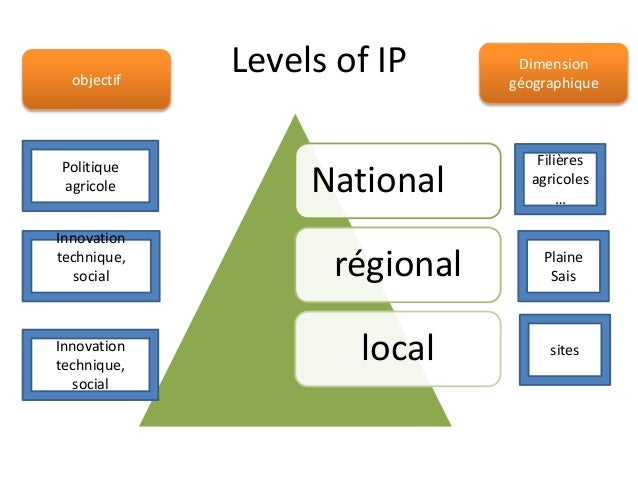 Levels of IP  National  régional  local  Filières  agricoles  …  Plaine  Sais  Politique  agricole  Innovation  technique,...