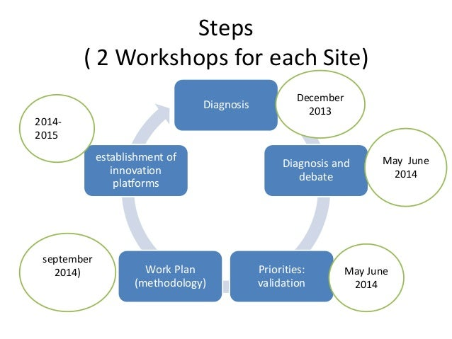 Steps  ( 2 Workshops for each Site)  Diagnosis  Diagnosis and  debate  Priorities:  validation  establishment of  innovati...