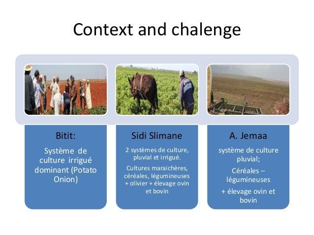 Context and chalenge  Bitit:  Système de  culture irrigué  dominant (Potato  Onion)  Sidi Slimane  2 systèmes de culture, ...