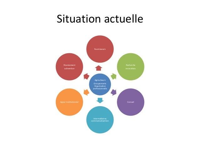 Situation actuelle  fournisseurs  Agriculteurs  Groupements  Organisation  professionnelle  Recherche  innovaition  Consei...