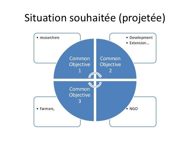 Situation souhaitée (projetée)  • Development  • Extension…  • researchers  Common  Objective  1  Common  Objective  2  Co...