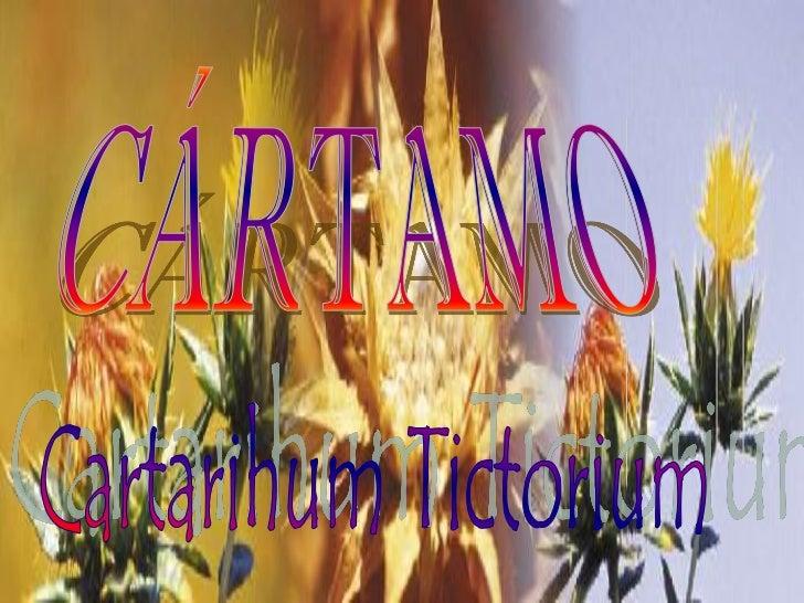 origen El cártamo es una planta, de la familia de los  cardos, originaria de la India, y que hoy su  cultivo está extendi...